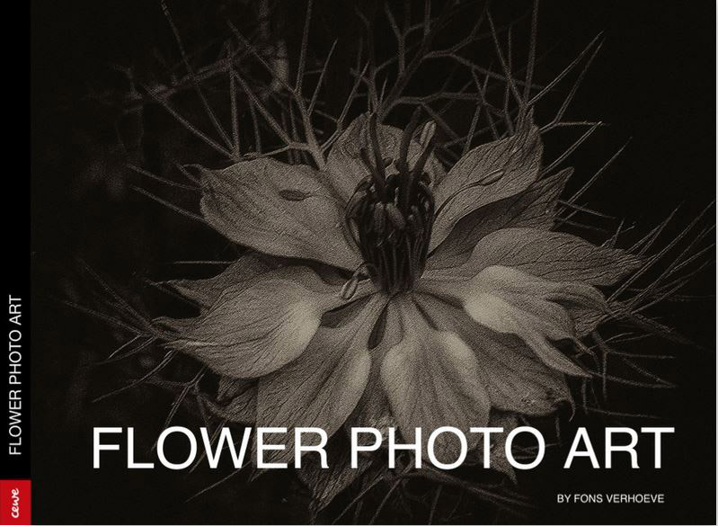 Das Buch: Flower  Photo Art